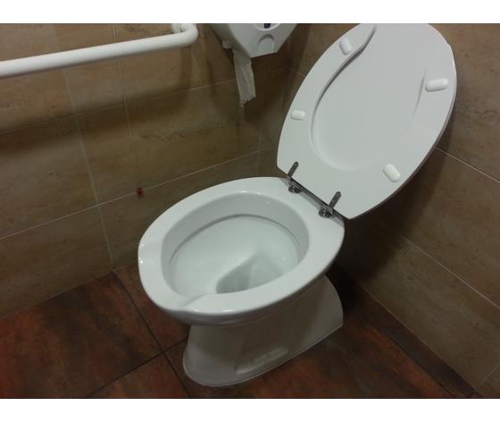 Sedile Wc Per Disabili