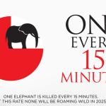 Underskrifter for elefanterne