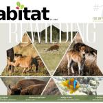 Habitat #13