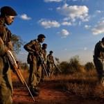Guerillakrig og næsehorn