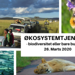 Event: Økosystemtjenester – basis for biodiversitet eller bare business?