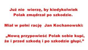 Kopia (19) Kopia Nowa 2015
