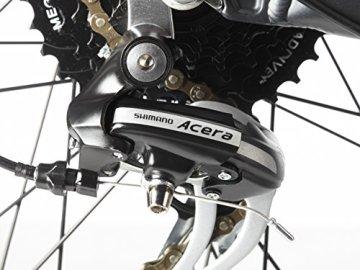 Fischer Proline E-Bike