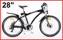 Powerpac E-Bike Mountainbike