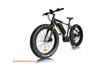 Yupik E-Bike