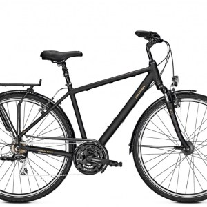 Raleigh Chester 28 Inch 60 cm Heren 21V V-Brake Matzwart