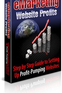 E-Marketing Website Profits
