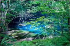 【青森県】白神山地・十二湖