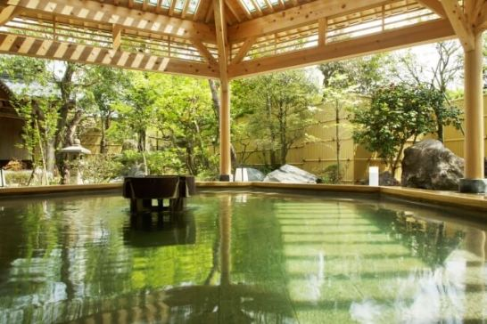 3位: 新潟県 月岡温泉 摩周 月美の湯