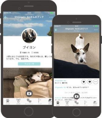 犬・猫の写真共有スマートフォンアプリ「ドコノコ」