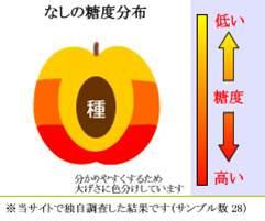 美味しい梨の見分け方