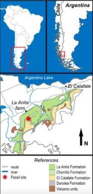 図1. 化石産地を示す地図。 Magallanodon baikashkenkeの標本は、赤い星で示された、カンパニアン後期―マスチリヒチアン最初期に堆積したコリロ層の露頭から発見された。