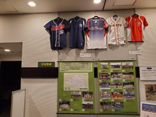 文京区と少年野球