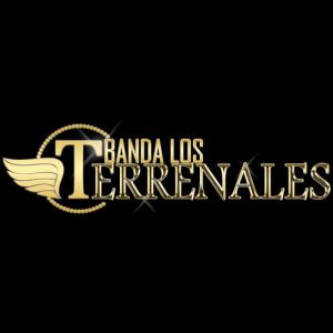 Banda Los Terrenales - Solo Vete (Single 2020)
