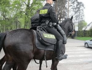 policja-konna