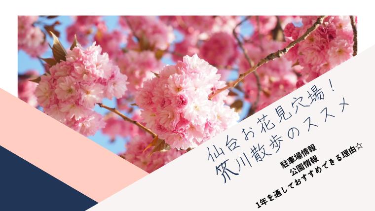 仙台市お花見おすすめざる川☆駐車場情報と散歩やイコタ公園も穴場!