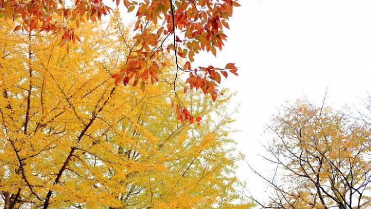秋保の磊々峡の周辺観光は何がある?