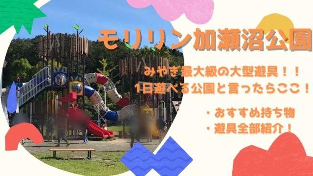 利府の公園で大きいのは加瀬沼公園☆おすすめ遊具や駐車場情報まとめ