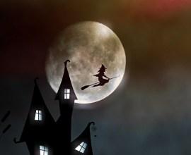 月に願いを! 11月14日の夜は空を見上げよう!!