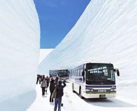 この時期にしかみられない! 立山黒部アルペンルートで、大迫力の雪の壁を楽しむ。
