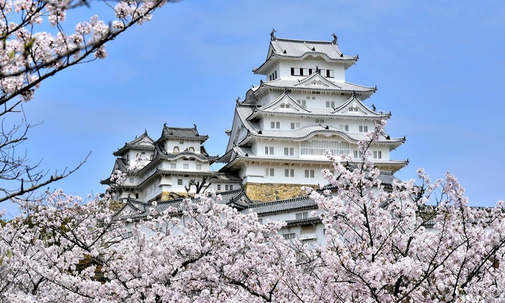 桜はまるで歴史の傍観者? おすすめのお城を彩るお花見スポットはココ!