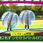 漢字vsひらがな バンプボール・スーパーボール - 欅って書けない