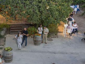 מרכז המבקרים ביקב ברבדו. צילום: אייל גוטמן