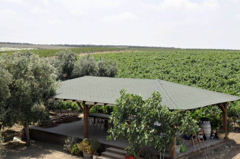 הנוף הנשקף ממרכז המבקרים של ברבדו