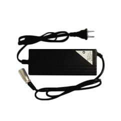 36 Volt Taco Wiring Diagram Electric Skateboard Parts Charger For A T G And Gi
