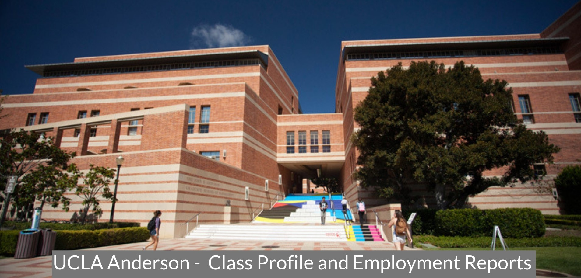 Ucla Anderson School Of Management Ucla Anderson Mba