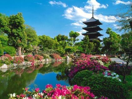 Característica de Kyoto es la belleza de sus constrtucciones  y jardines