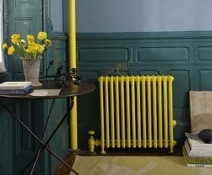 Peinture radiateur couleur