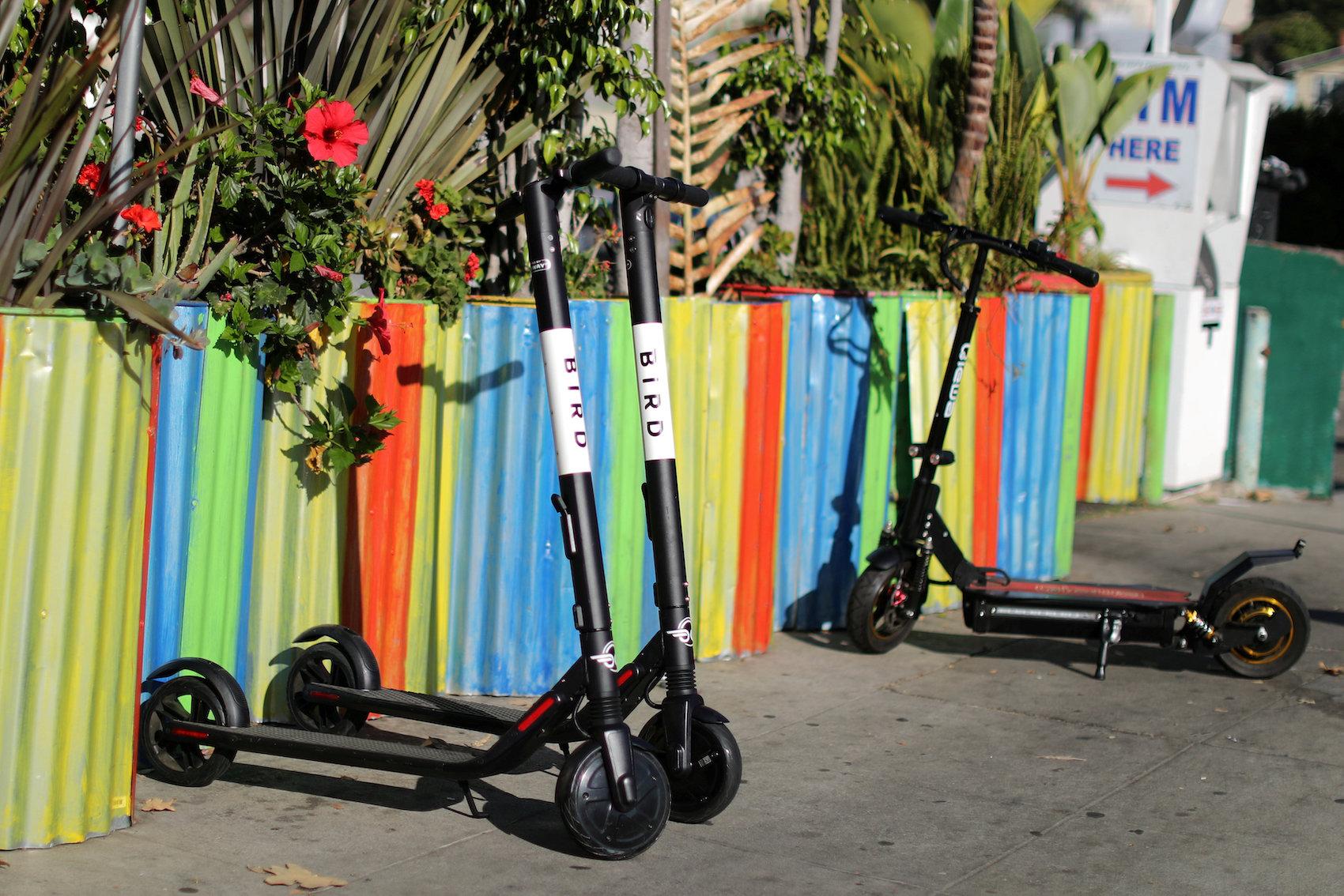 Des trottinettes Bird en attente d'usagers à Santa Monica (États-Unis). (Reuters/Lucy Nicholson)