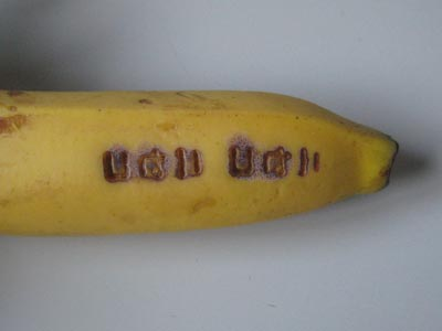バナナに焼印4分後