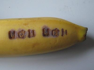 バナナに焼印を押して8分後