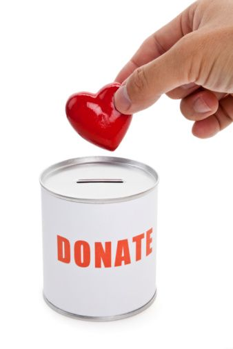 Michigan charitable giving