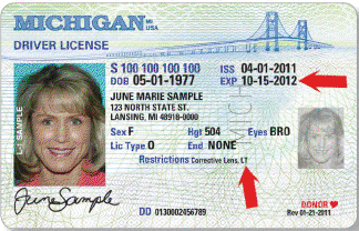 michigan enhanced drivers license application