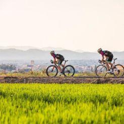 ruta_tierra_arroz