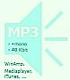 MP3 - 160 Kbit