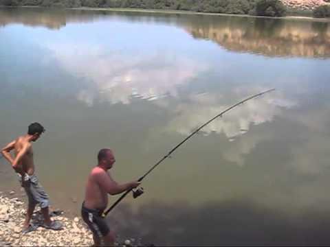 Нашенец извади същински звяр от водата! Невиждано голям сом! (ВИДЕО)