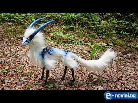 10 екзотични и редки птици, които никога не сте виждали! (ВИДЕО)