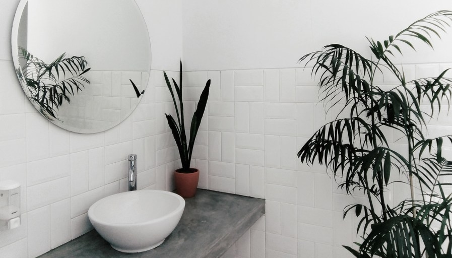 White tile bathroom with raised sink bowl and decorative plants