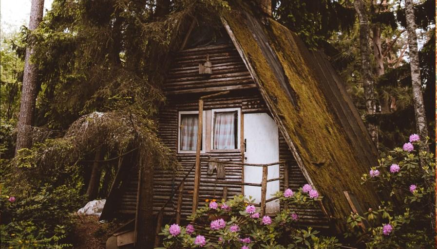 Tiny cottage within lush garden
