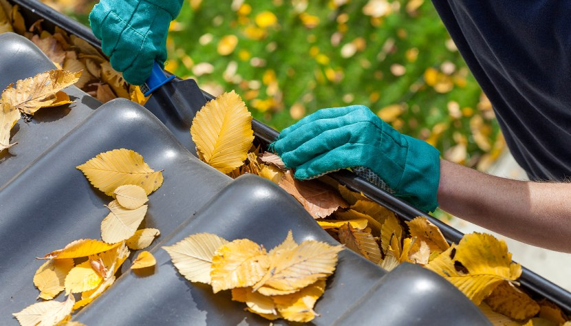 Person wearing gloves, cleaning leaves from eavestrough