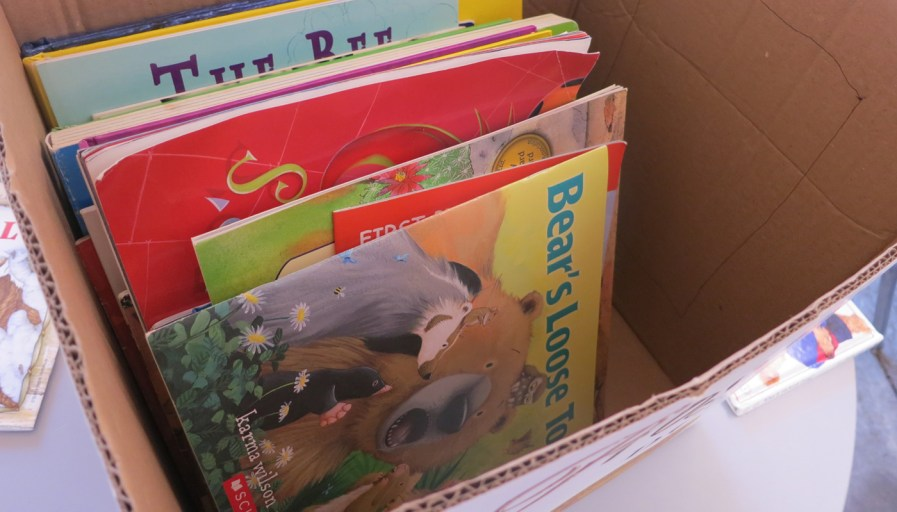 Books packed in a box for a move