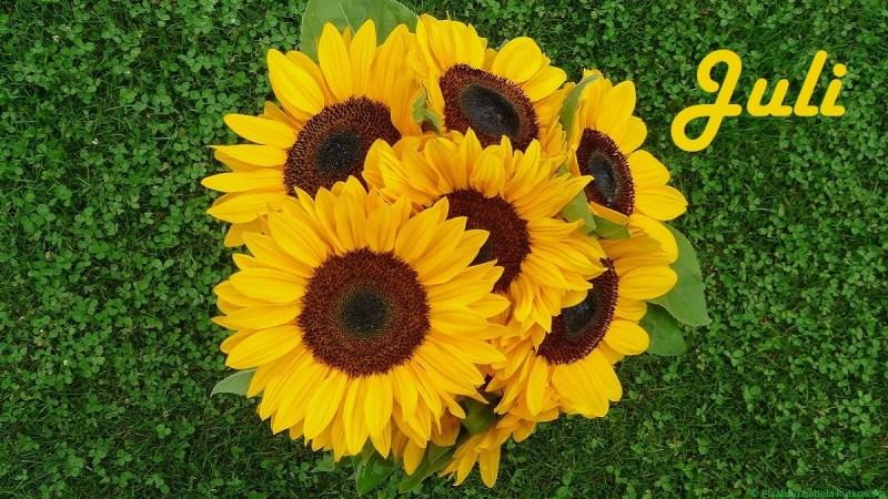 Sonnenblumen als Symbolbild für Juli