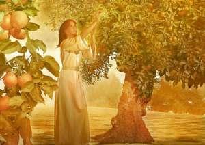 ¿Qué Es Un Verdadero Paraíso Espiritual?