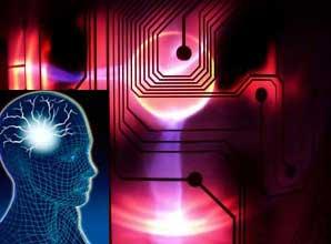 brain-circuits-11380