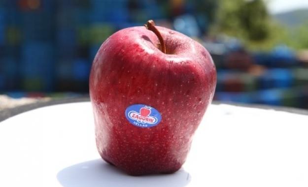 Νέα Κατάκτηση του Αγροτικού Συνεταιρισμού Ζαγοράς- Μήλα Ζαγοράς Πηλίου στην Αιθιοπία