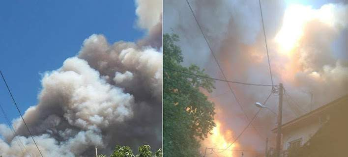 Ολονύχτια μάχη με τις φλόγες στην Εύβοια -Εκκενώθηκαν χωριά
